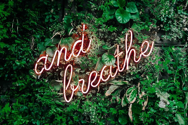 and breathe digital bohemienne tim goedhart